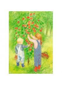 Postal Niños recogiendo manzanas