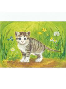 Postal El gatito