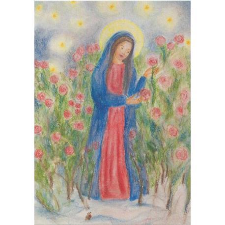 Postal - María en el jardín de rosas - Narava - Tienda Waldorf