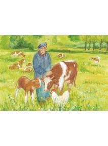 Postal - vacas con granjero