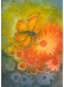 Postal Verano con mariposa