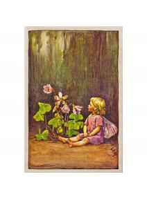 Postal de madera Hada Oxalis