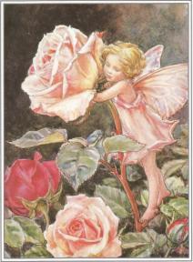 Postal de madera Hada Rosa