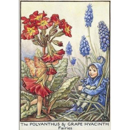 Postal de madera Hada Prímula y Jacinto